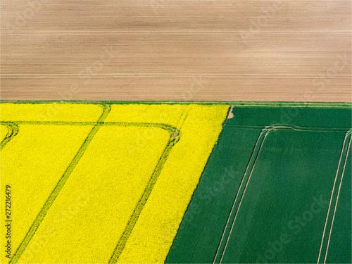Papiers peints Jaune vue aérienne de champs de colza à Nucourt dans le Val d'Oise en france