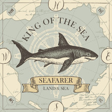 Vector Banner With Hand-drawn Shark On The Background Of Old Map And Steering Wheel In Retro Style. Illustration On The Theme Of Travel, Adventure And Discovery With Words King Of The Sea, Seafarer