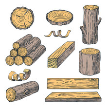 Wood Logs, Trunk And Planks, Vector Color Sketch Illustration. Hand Drawn Wooden Materials. Firewood Set