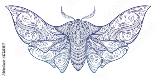 Fotomural Abstract mystical Moth in psychedelic design