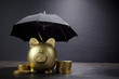canvas print picture - Gold Piggy bank with umbrella concept for finance insurance, protection, safe investment or banking