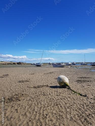 Fototapeta A marée basse