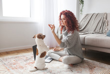 Young Attractive Woman Playing With Her Little Cute Dog. Female Training Her Pet Indoors.