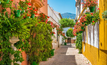 The Beautiful Estepona, Little Town In The Province Of Malaga, Spain.