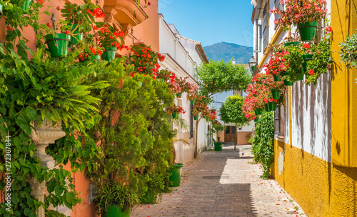 The beautiful Estepona, little town in the province of Malaga, Spain Wallpaper Mural