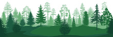 Forest Silhouettes. Wild Natur...