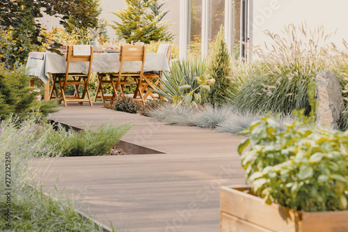 Fotografia Plants and wooden chairs at table with food on terrace of house in the summer