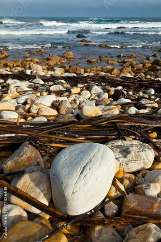 The Cape of Good Hope, Cape Point, Sudáfrica, África Canvas-taulu