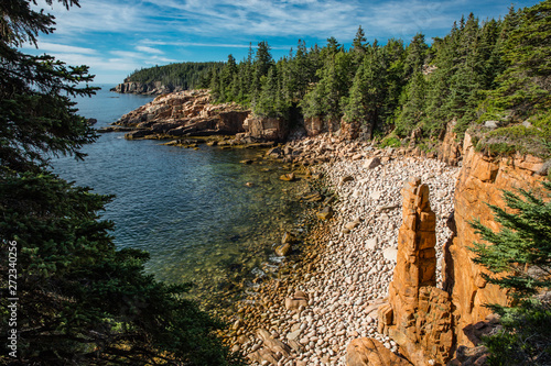 Tree Lined Shore Tapéta, Fotótapéta