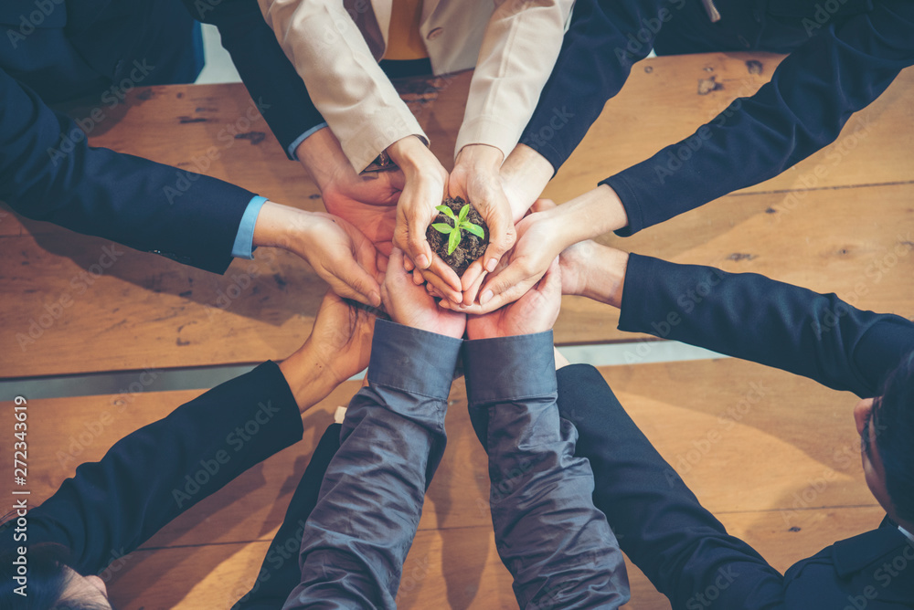 Fototapety, obrazy: Green Business Meeting. United Partners Team with hands together holding plant green trusted friends. Hands stacked Holding with sustainability partners. Trust business authentic of people.