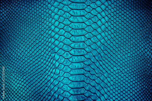 Leinwand Poster Close up of Luxury snake skin texture