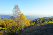 Autumn mood on Monte di Nese near Bergamo. View on misty Padan Plane.