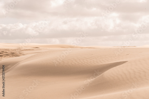 Obraz na płótnie Details of a sand dune in beautiful light.