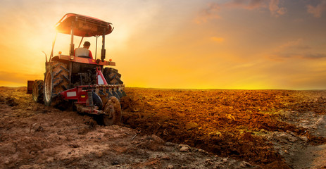 tractor is preparing the soil for planting over sunset sky background