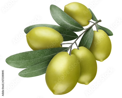 Poster Olijfboom Olive branch with green olives, isolated on white background