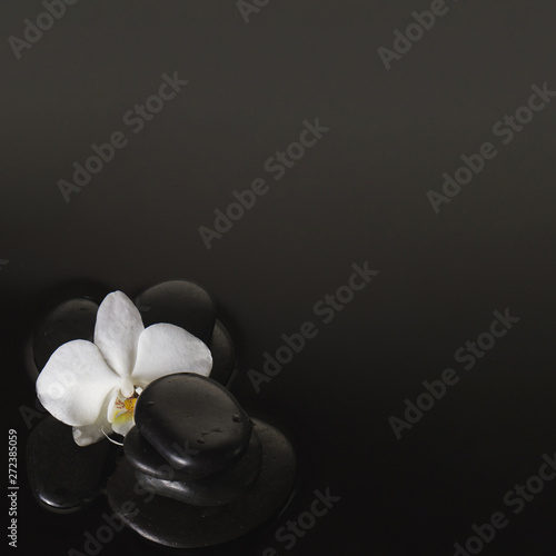 Close up of volcanic stones and orchid