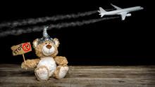 Ein Teddy Demonstriert Gegen C...