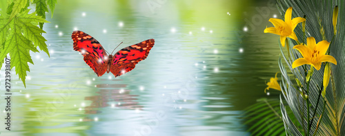 Poster Waterlelies image of flowers and butterflies on water background