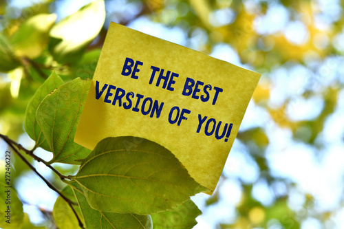 Word writing text Be The Best Version Of You Canvas Print