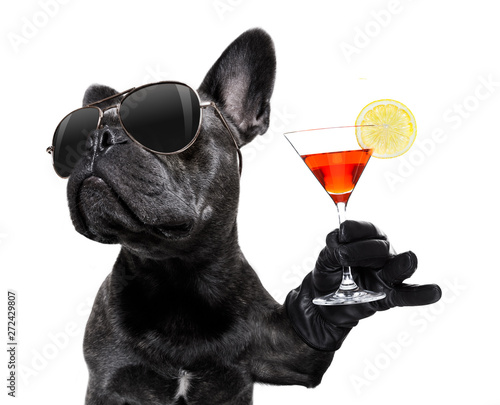 Fotobehang Franse bulldog drunk dog drinking a cocktail