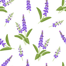 Wild Purple Flowers Seamless Pattern. Branches Of Flowering Sage On A White Background. Vector Illustration Of Medical Herbs In Cartoon Flat Style.