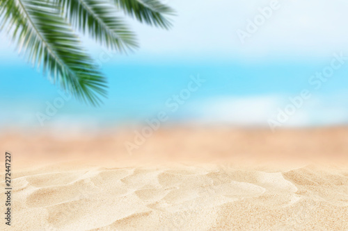 Foto auf Leinwand Texturen Empty sand beach in front of summer sea and palm tree background with copy space