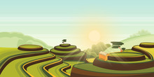 Rice Harvest Growth On Terrace Fields. Vector Cartoon Illustration Of Green Landscape. Asian Rural View Background.