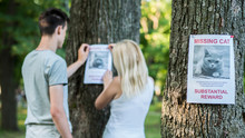 Young Couple Putting Up Missing Pet Banners
