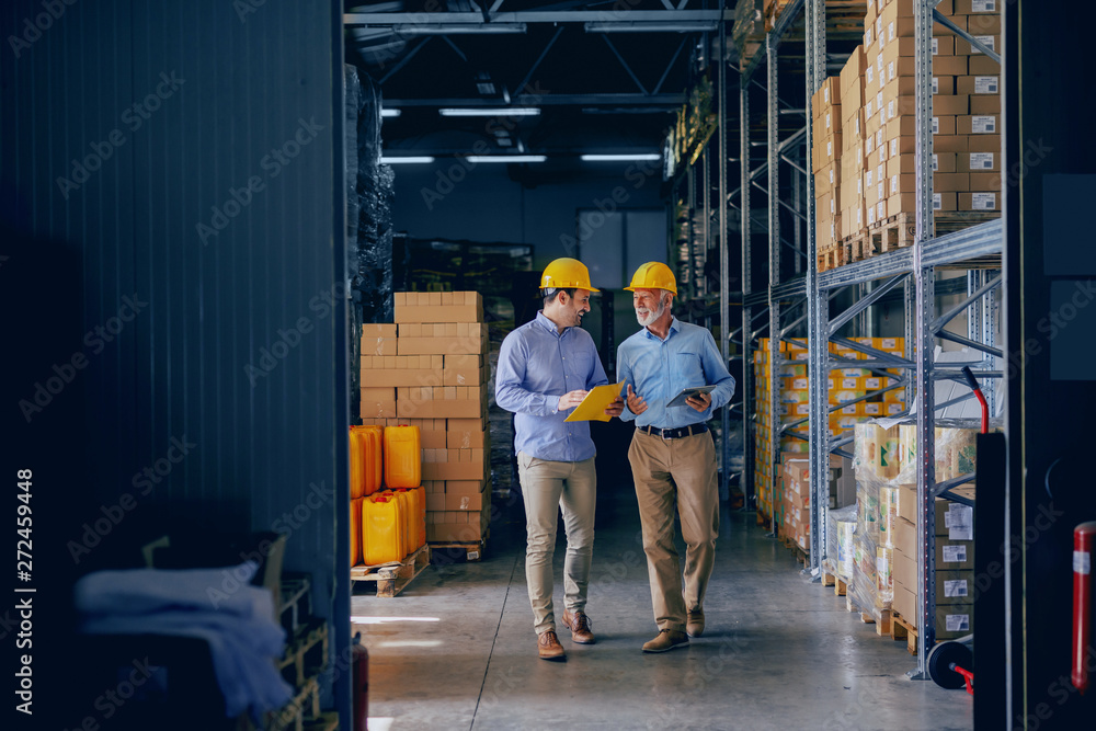 Fototapeta Two business partners in formal wear and with protective yellow helmets on heads walking and talking about business. Younger one holding folder with data while older one using tablet.