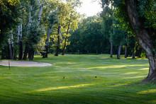 Green Grass On The Empty Golf ...