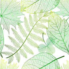 Panel Szklany Do biura Seamless pattern with leaves. Vector, EPS 10.