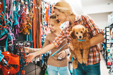 Fototapeta Zwierzęta - Mother and daughter with their poodle puppy in pet shop.
