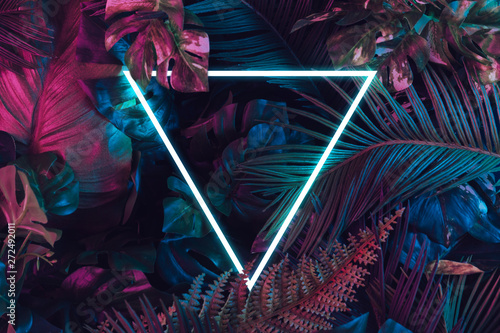Photo Stands Asia Country Creative fluorescent color layout made of tropical leaves. Flat lay neon colors. Nature concept.