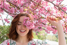 Woman Covering Face With Sakura Blooms