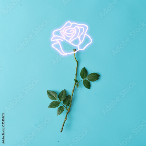 Pink neon lights rose sign with natural stem and leaves. Minimal flower concept. Flat lay. - 272496415
