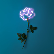 Pink Neon Lights Rose Sign With Natural Stem And Leaves. Minimal Flower Concept. Flat Lay.