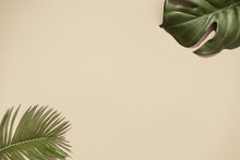 Top View Of Green Tropical Leaves On Sand Color Background. Flat Lay. Minimal Summer Concept With Palm Tree Leaf. Creative Copyspace.