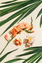 Pastel Orange Gladiolus And Roses
