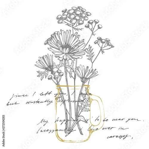 Tansy and Chamomile. Bouquet of hand drawn flowers and herbs. Botanical plant illustration. Handwritten abstract text wallpaper. Imitation of a abstract vintage lettering. Wall mural