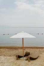 The Dead Sea Life