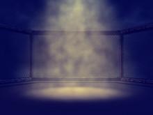 Empty MMA Cage Lit By Spotlight