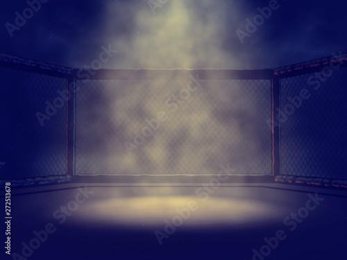 Obraz na plátne Empty MMA cage lit by spotlight