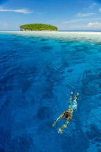 Swimming In Clear Tropical Water