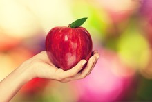 Woman Hand Holding Big Red Apple