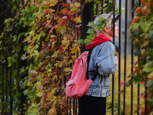 A Young Girl Looks Through A Fence Covered With Autumn Leaves