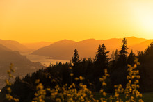 Glowing Golden Orange Sunset Sky Over Silhouetted Pacific Northwest Trees And Layers Of Mountains In The Columbia River Gorge