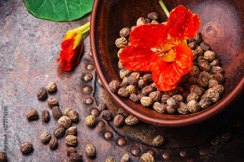 Photo  Nasturtium officinale with seeds