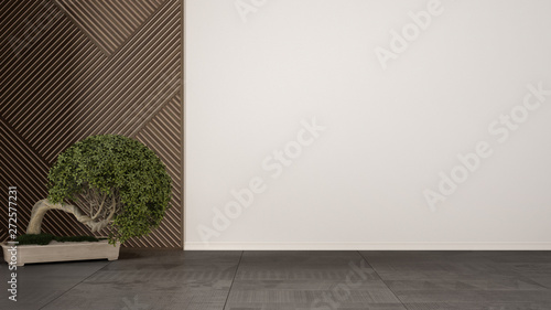 Empty room with wooden panel and potted plant bonsai
