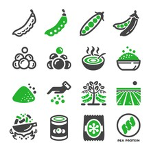 Green Pea And Produce Icon Set...