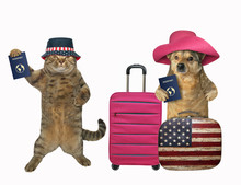 The Dog And The Cat Tourist With Suitcases And International Passports Are Going To Travel. White Background. Isolated.